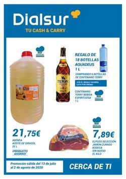 Catálogo Dialsur Cash & Carry en Gandia ( Publicado ayer )