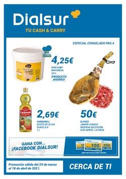 Catálogo Dialsur Cash & Carry ( 4 días más)
