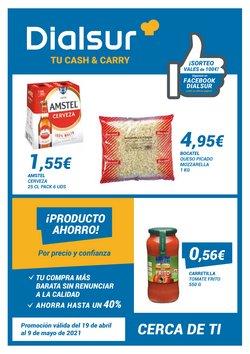 Catálogo Dialsur Cash & Carry ( Caduca hoy)
