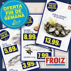 Catálogo Froiz en Zamora ( Caduca hoy )