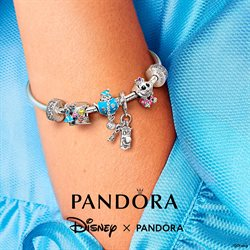 Ofertas de Primeras marcas en el catálogo de Pandora ( Caduca hoy)