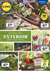 Catálogo Promo Tiendeo en La Orotava ( 2 días más )