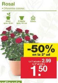 Oferta de Rosales por 2.24€