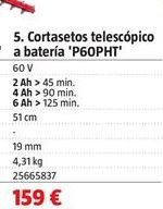Oferta de Cortasetos telescópico por 159€