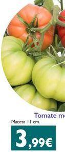 Oferta de Tomate monterosa por 3.99€