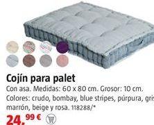 Oferta de Cojines por 24,99€