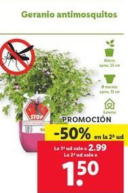 Oferta de Geranio antimosquitos  por 1,5€