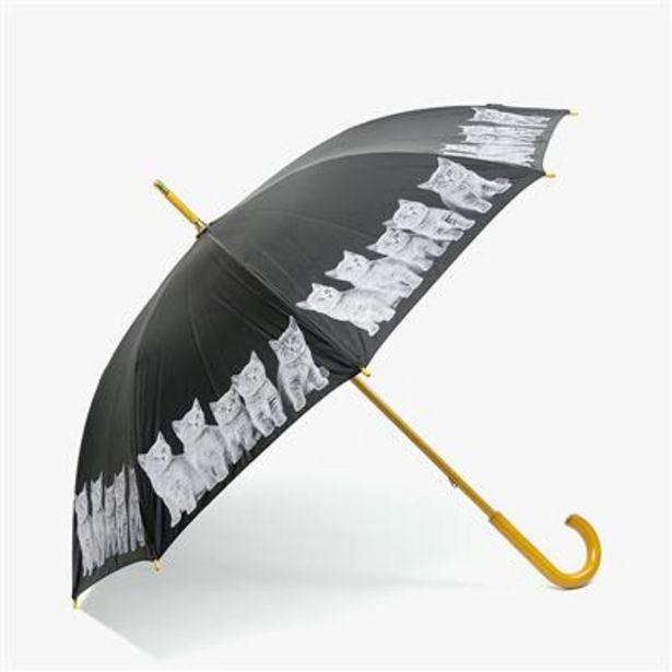 Oferta de Paraguas Gatitos por 19€