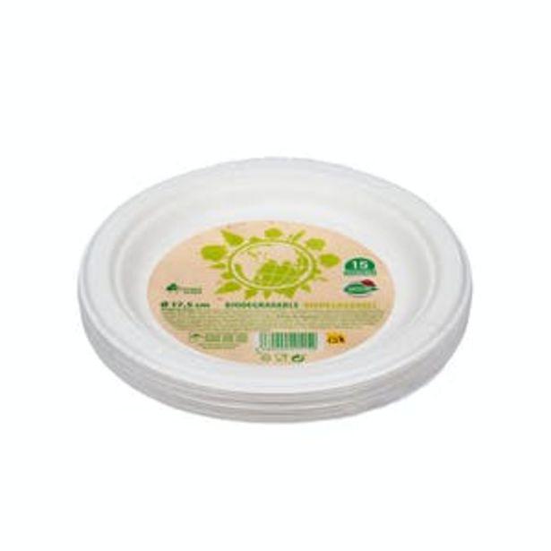 Oferta de Plato postre biodegradable Bosque Verde por 1,2€