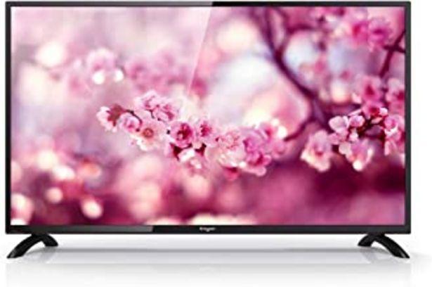 Oferta de TV Televisión Televisor Engel LE4050 Ever-LED de 40 por 175€
