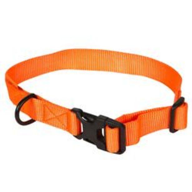 Oferta de Collar Perro Caza Solognac 100 Ajustable Naranja Fluo por 1,49€