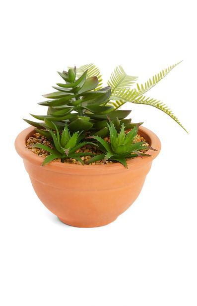 Oferta de Maceta de terracota con plantas artificiales por 7€