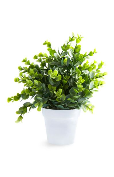 Oferta de Maceta blanca con planta artificial pequeña por 13€