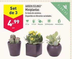 Oferta de Plantas Garden Feelings por 4,99€