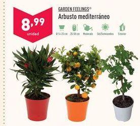 Oferta de Plantas Garden Feelings por 8,99€