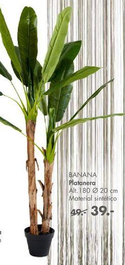 Oferta de Plantas artificiales por 39€