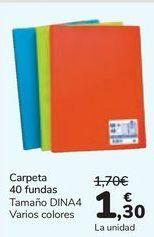 Oferta de Carpeta 40 fundas  por 1,3€