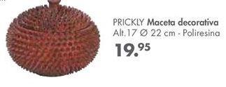 Oferta de Macetas por 19,95€