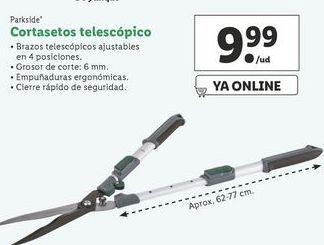 Oferta de Cortasetos telescópico Parkside por 9,99€