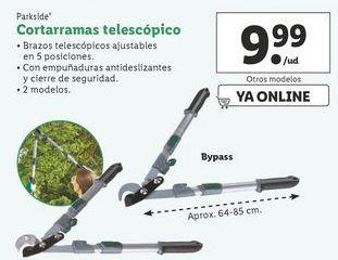 Oferta de Cortarramas telescópico  Parkside por 9,99€