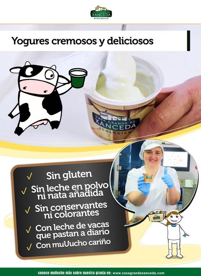 Oferta de Yogur ecológico xanceda por