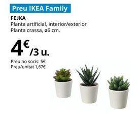 Oferta de Plantas por 4€