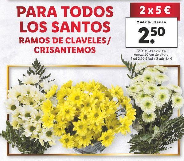 Oferta de Claveles por 2,99€
