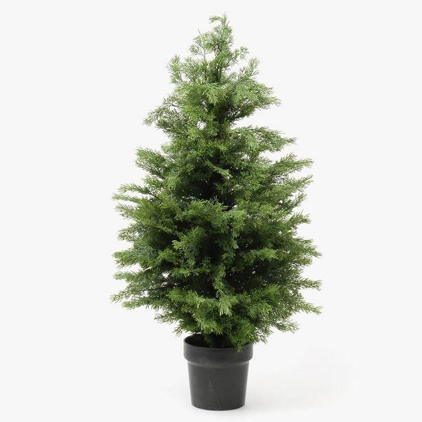 Oferta de Árbol de Navidade Boj 90 cm por 34,99€