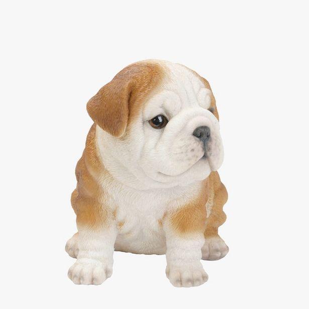 Oferta de Bulldog 19x14x17 cm por 17,95€