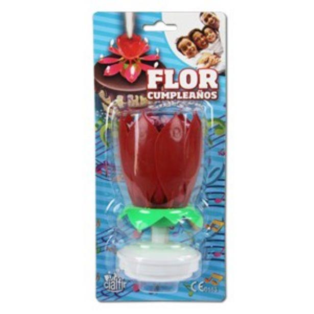 Oferta de Flor Cumpleaños por 5€