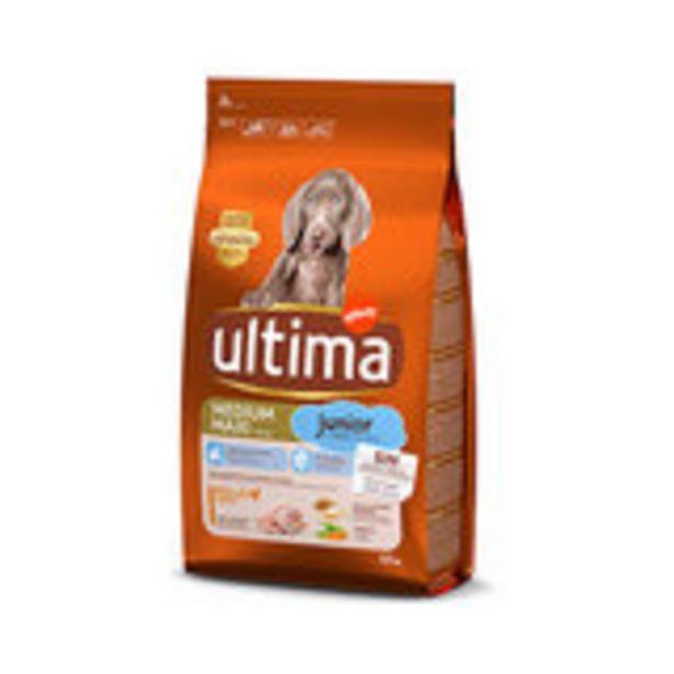 Oferta de Comida para perros junior 1,5 k por 5,1€