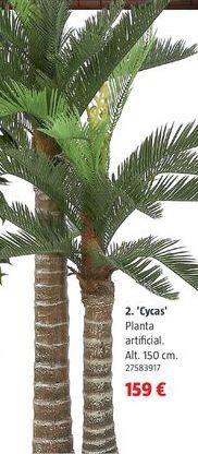 Oferta de Plantas por 159€