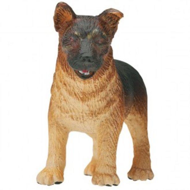 Oferta de Cachorro pastor alemÁn por 1€
