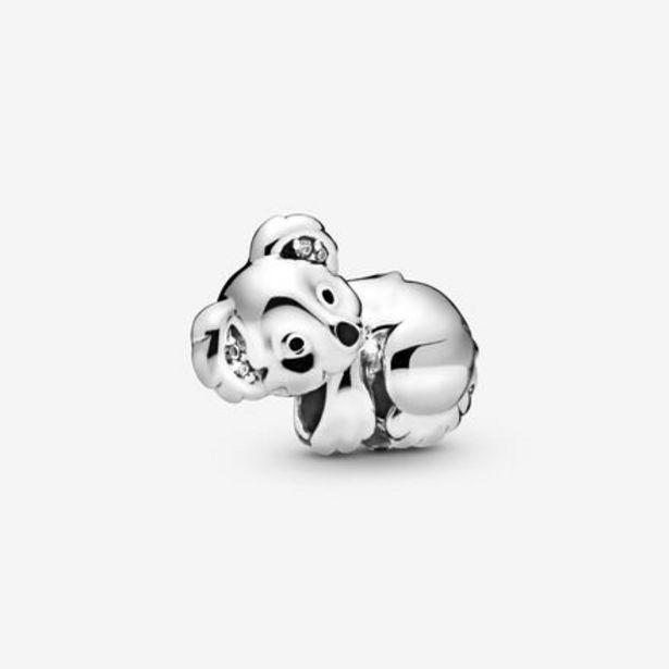 Oferta de Charm Koala por 45€