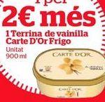 Oferta de Tarrina de helado Carte d'Or por