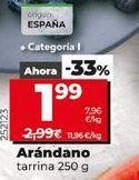 Oferta de Arándanos por 1,99€