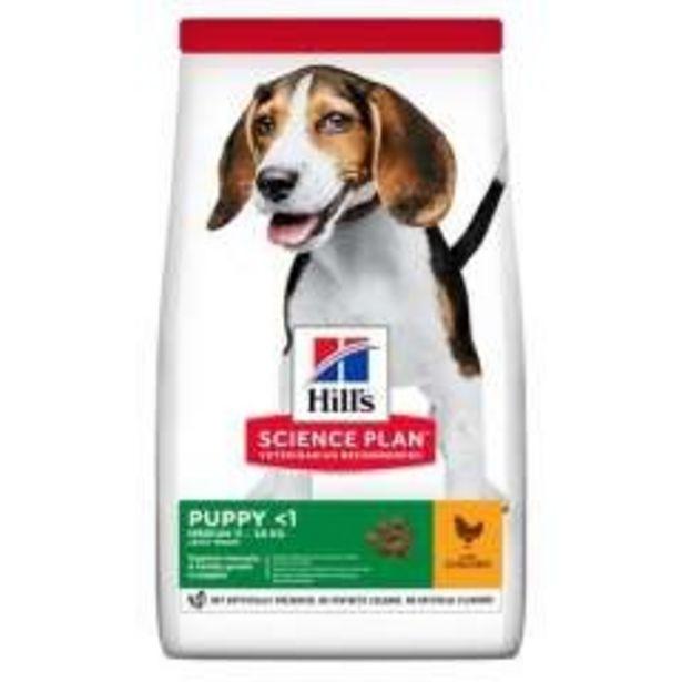 Oferta de Hill's Canine Puppy Healthy Development Medium Pollo por 15,99€