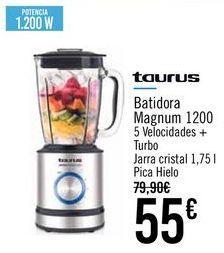 Oferta de TAURUS Batidora Magnum 1200 por 55€