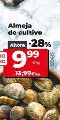 Oferta de Almejas de cultivo por 9,99€