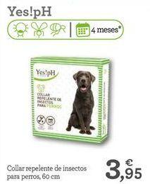 Oferta de Collar para perros por 3,95€
