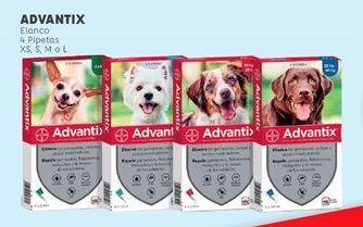 Oferta de Accesorios para animales por