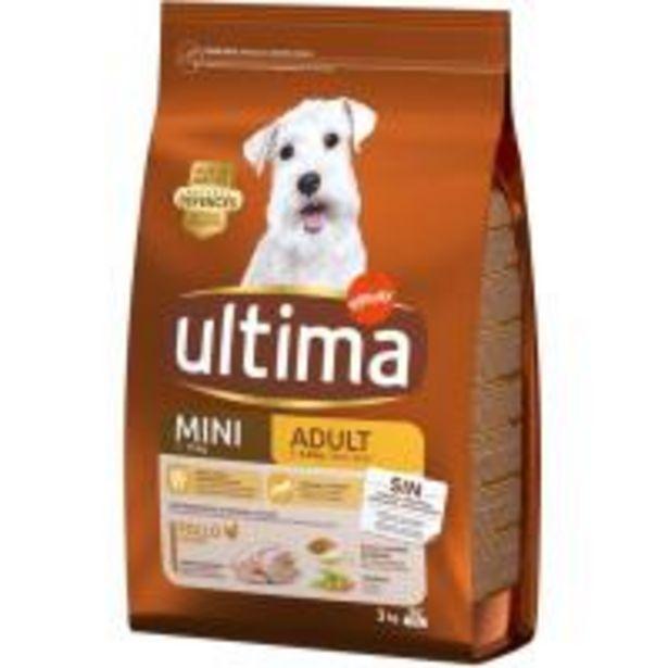 Oferta de Alimento de pollo para perro mini adulto ULTIMA, saco 3 kg por 11,5€