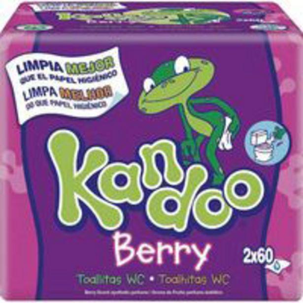 Oferta de Toallitas wc frutas del bosque  KANDOO, pack 2x60 u por 5,25€