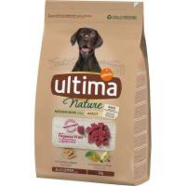 Oferta de Alimento de cordero para perro mediano ULTIMA Nature, saco 3 kg por 13,2€