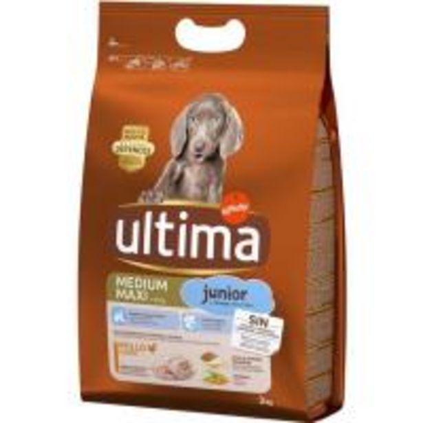 Oferta de Alimento para perro mediano-maxi junior ULTIMA, saco 3 kg por 12,25€
