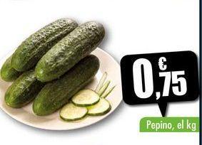 Oferta de Pepino, el kg por 0,75€
