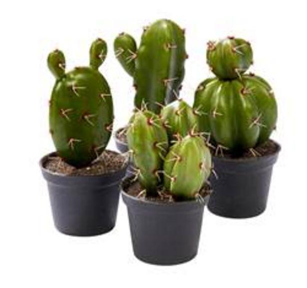 Oferta de MEXICO Planta artificial en maceta 4 modelos verde A 12 cm; Ø 5 cm por 2,54€
