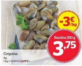 Oferta de Coquina por 3,75€