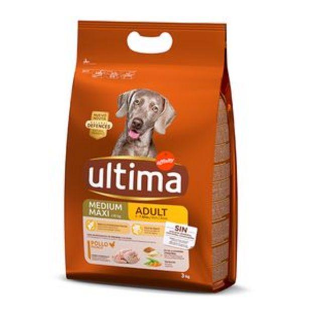 Oferta de Comida para perros Última adulto bolsa 3kg por 10,95€