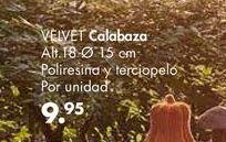 Oferta de Calabaza VELVET  por 9,95€